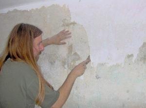 как удалить водоэмульсионку со стены