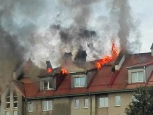 бытовые пожары что делать после
